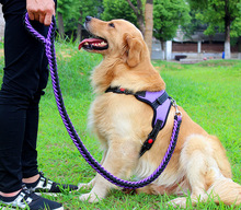 Pet collar, large dog harness, traction strap set, P-chain for dogs, lead  harness  pets, medium vest   dogs цена