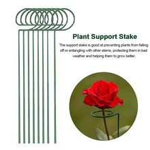 8pcs Vertical Climbing Plant Support Stake Set For Flower Metal Outdoor Garden Prevent Falling Single Stem Balcony Cable Tie(China)