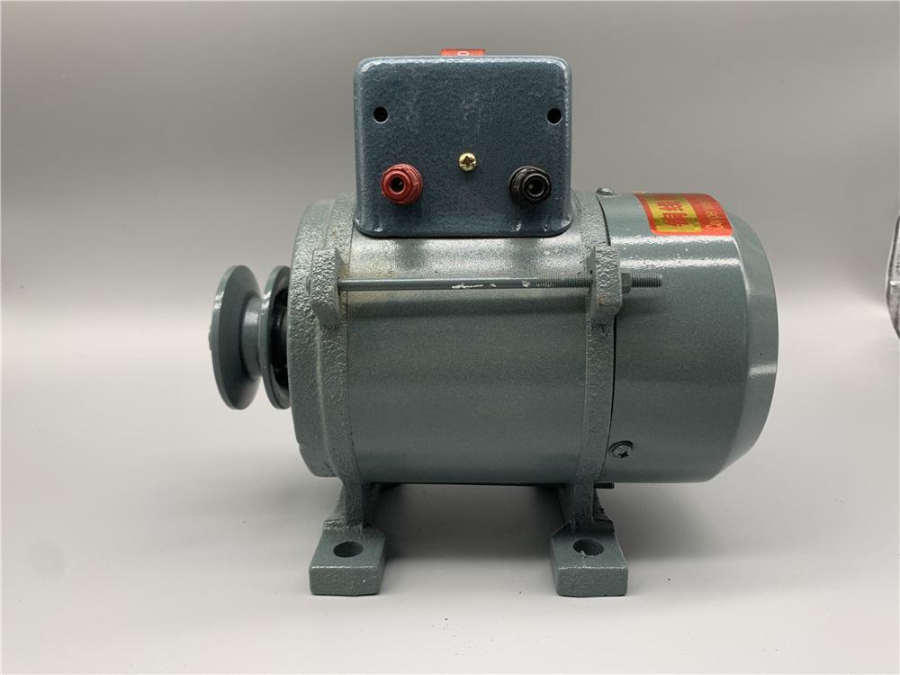 1000W/1800W Generator 220V High Power 3500W 5000W Small Pulley Type Permanent Magnet Lighting Generator DC
