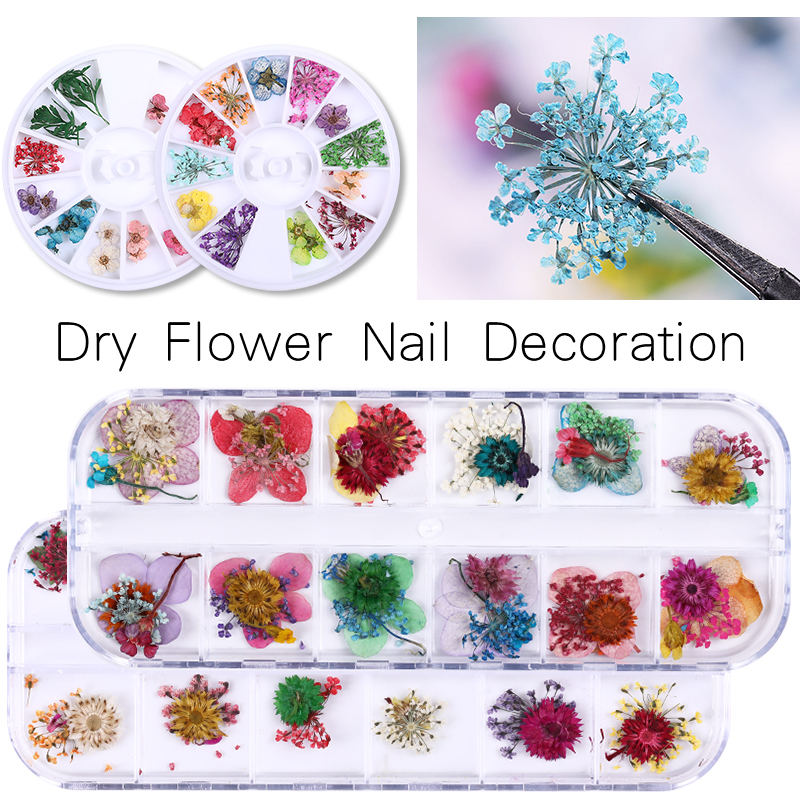 1 Box Dried Flowers Leaf Nail Decoration Natural Floral Sticker 3D Dry Beauty Nail Art Decals Jewelry UV Gel Polish Manicure