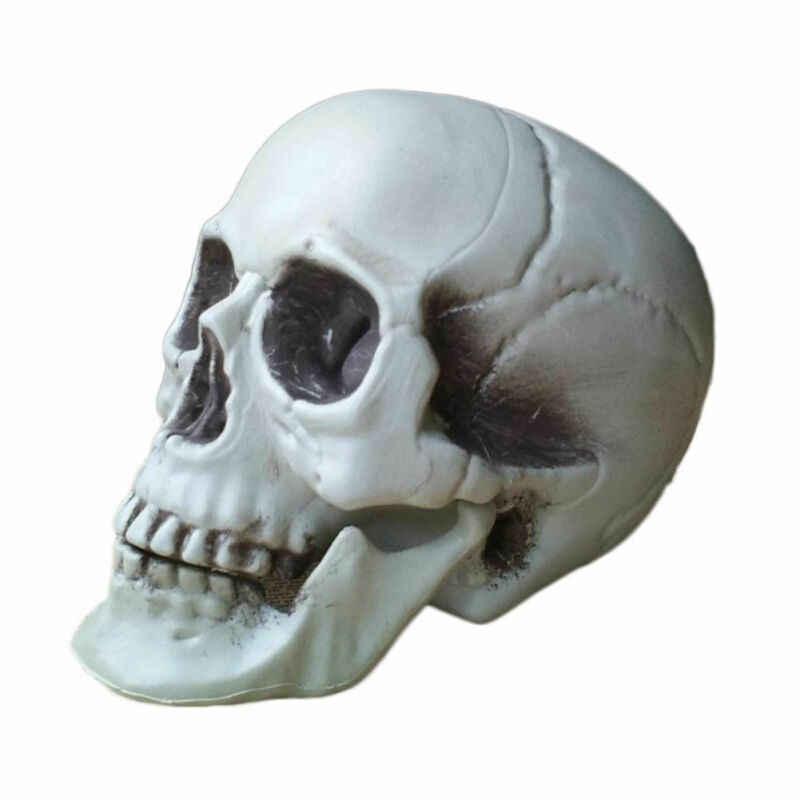 공포 인간의 해골 머리 해골 할로윈 스타일 소품 홈 파티 장식 8 크기