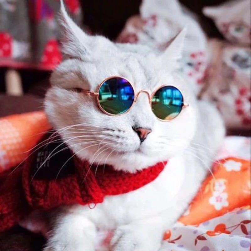 Pet Accessories for Cats Vintage Cat Eye Sunglasses Pet Photo Props Sunglasses Cat Eye Funny Cute Pet Decoration Dog Sunglasses