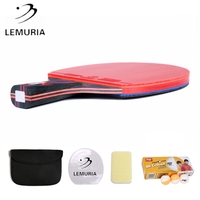 Lemuria Hybrid wood table tennis racket with 10 pcs DHS BI balls FL handle or CS handle ping pong bats with unsticky rubber