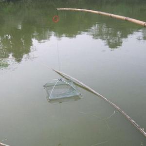 Image 4 - Red de pesca plegable portátil, 60x60cm, red de Nylon, Red de Camarón, Red de fundición, jaula de pesca, rejilla al aire libre
