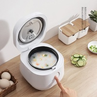 Multifunctional Electric Rice Cooker Mini Rice Multicooker 1.2L Smart Pot Lunch Box Timing Food Warmer Multicooker Rice Cooker