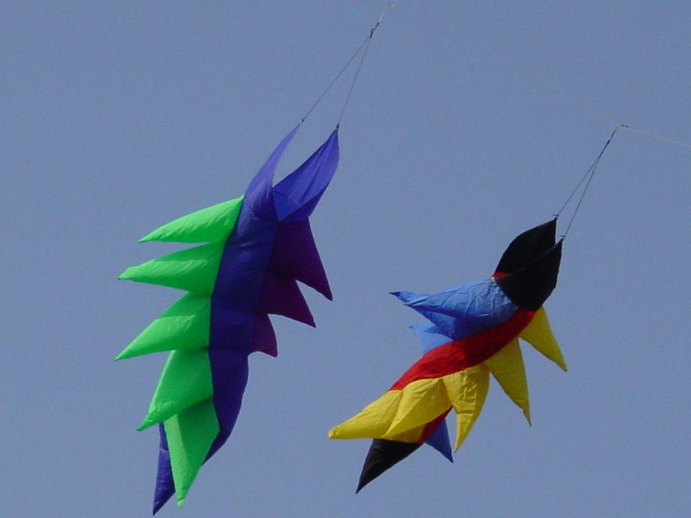 NEW ARRIVE All WEATHER 3D 1.2M POWER WINDSOCK /WEATHER VANE WIND SOCK FOR OUTDOOR TOY KITE