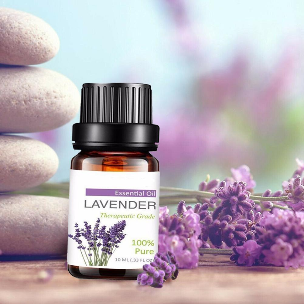 Essential Oils With Aromatic Aromatherapy Oil Fragrance Oil Lavender For Diffuser Essential Of U7W0 image