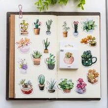 """Суккулентные наклейки """"растения"""" 50 шт/упак Скрапбукинг"""