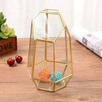 Vintage Decorative Jewelry box Brass Glass Terrarium Container Desktop Planter for Succulent Fern Moss Air Plants Holder Miniatu