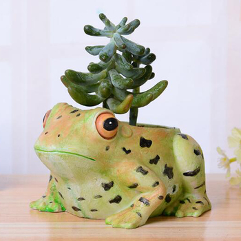 Creative cartoon Vivid Frog Succulent Plant Landscape Resin Flowerpot Small Pot Planter