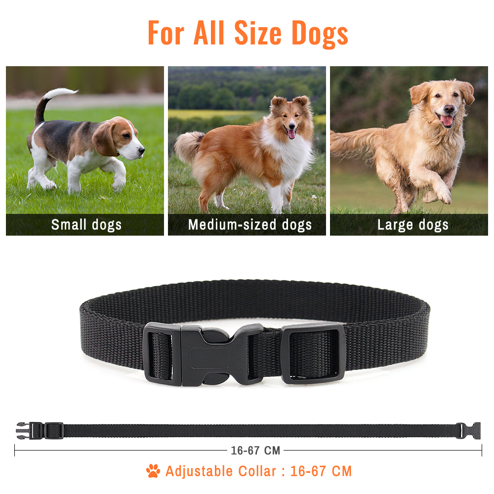 PETRAINER 619A 1 800M Remote Controlled Electric Dog Training Collar with Vibration and Beep 5