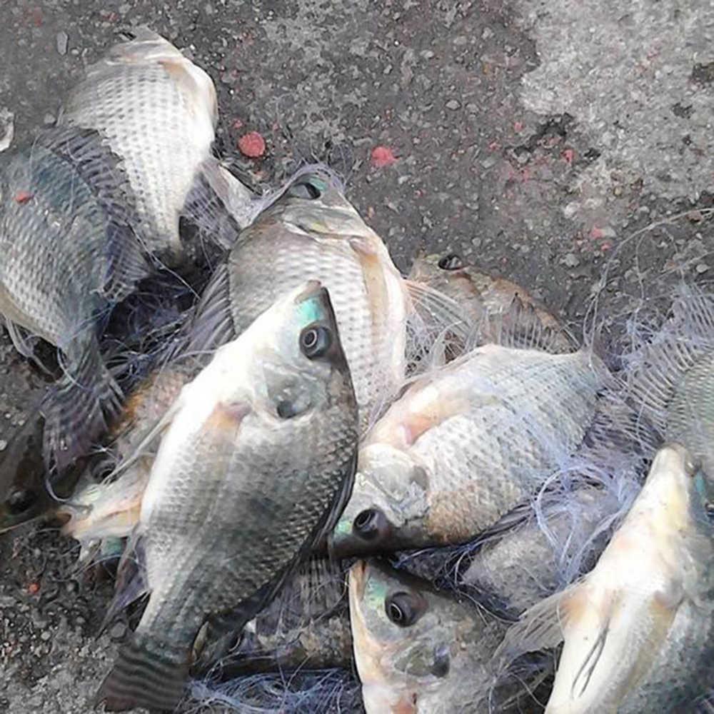 الصيد الصيد صافي Finefish شبكة من النيلون USA يلقي شبكات المياه اليد رمي يطير الصيد شبكة صغيرة شبكة الخيشومية صافي مع ثقالة