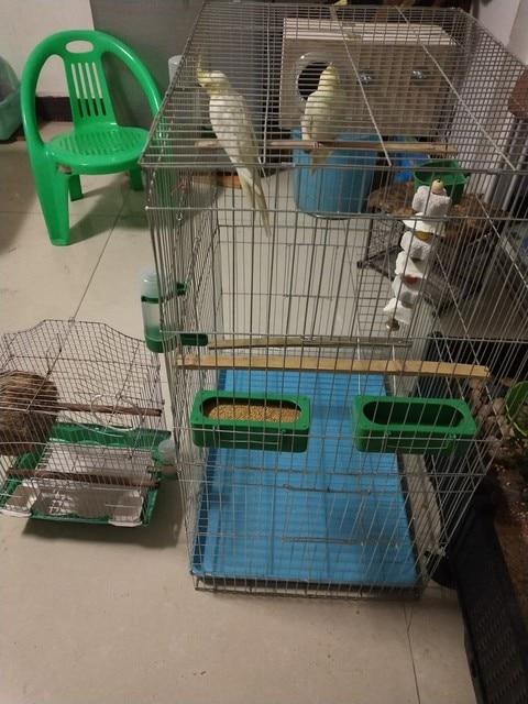 Large Bird Cages for Parrots Parakeet Octopus Metal Birdhouse Heightened Breeding Cage Bird Kages Bird Nest Pigeon Supplies 3