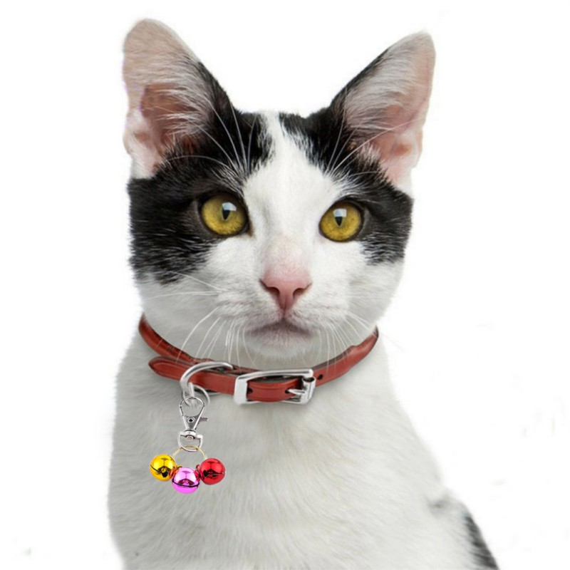 Pet Collar Necklace Multicolor Small Bells Mix Colors Copper Bell Pendants Jewelry For Cat Ornament Accessories