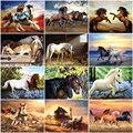 Раскраска по номерам для взрослых AZQSD, рисование лошадей, рама, сделай сам, акриловая краска, украшение для дома, картины по номерам, животное...