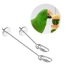 Bird-Toy Skewer Pet-Parrot Parakeet Hanging-Holder Small Fruit 2-Sizes Spear Animal Stainless-Steel