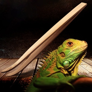 28cm Wooden Angled Reptile Fee
