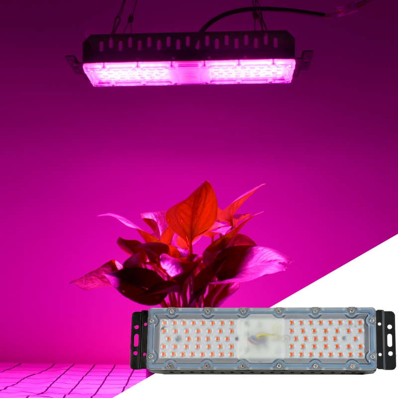 Warmhouse LED Plant Lamp Full Spectrum 220V 60W SMD2835 Chip Phyto Light For Plant Flower Seeding Grow Lighting With Hanging Kit