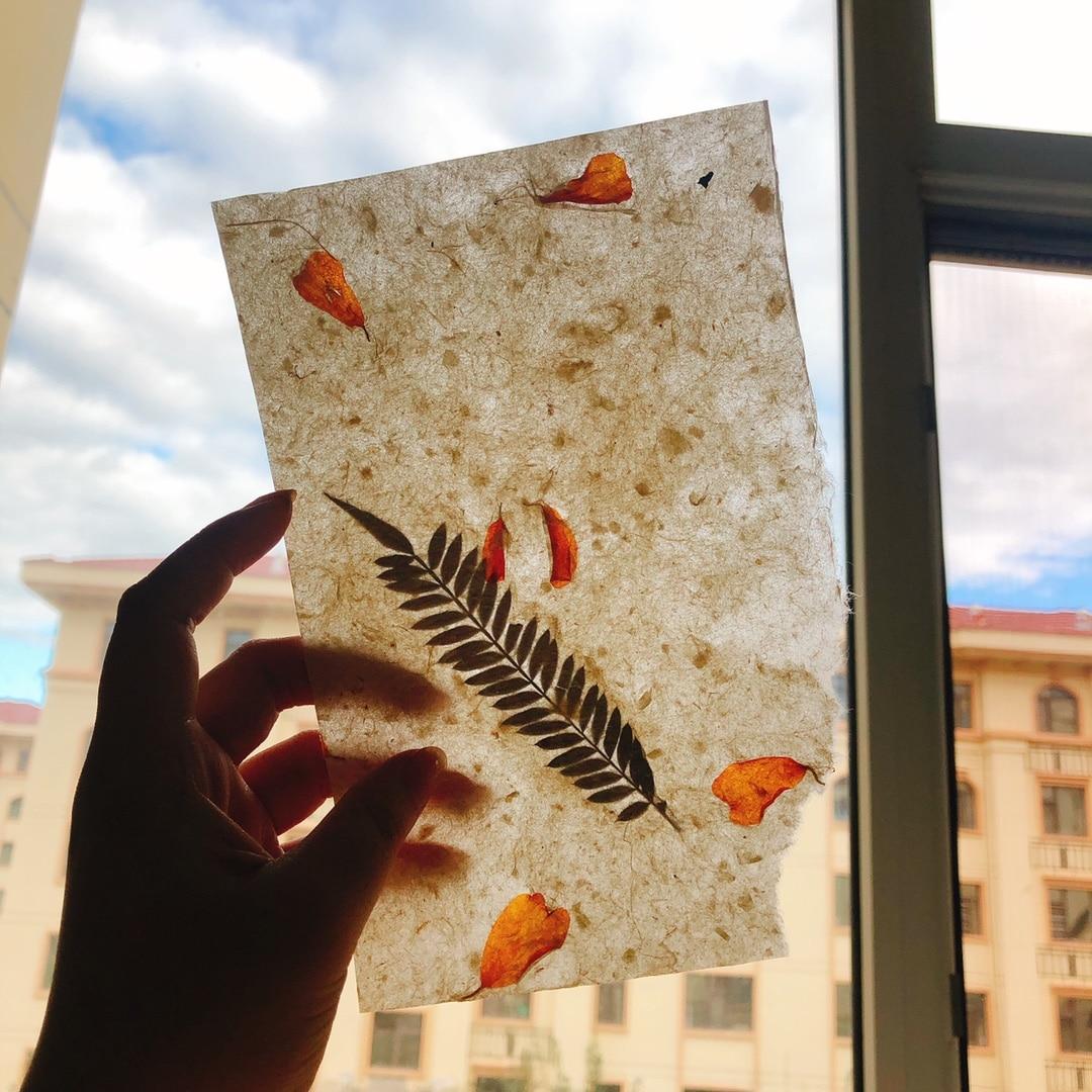 papel kraft material de fundo retro planta