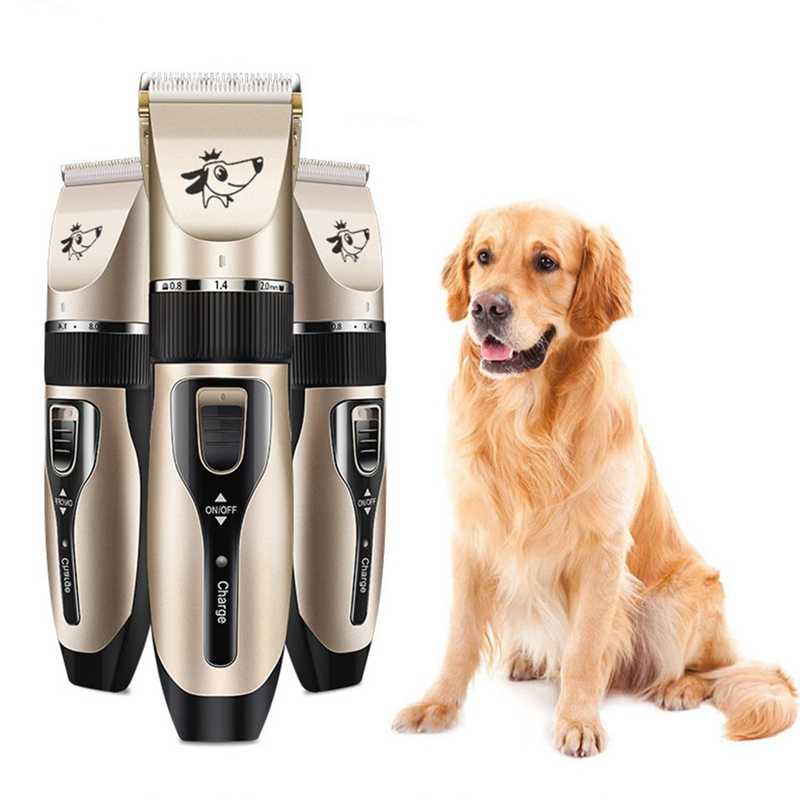 dog trimmers