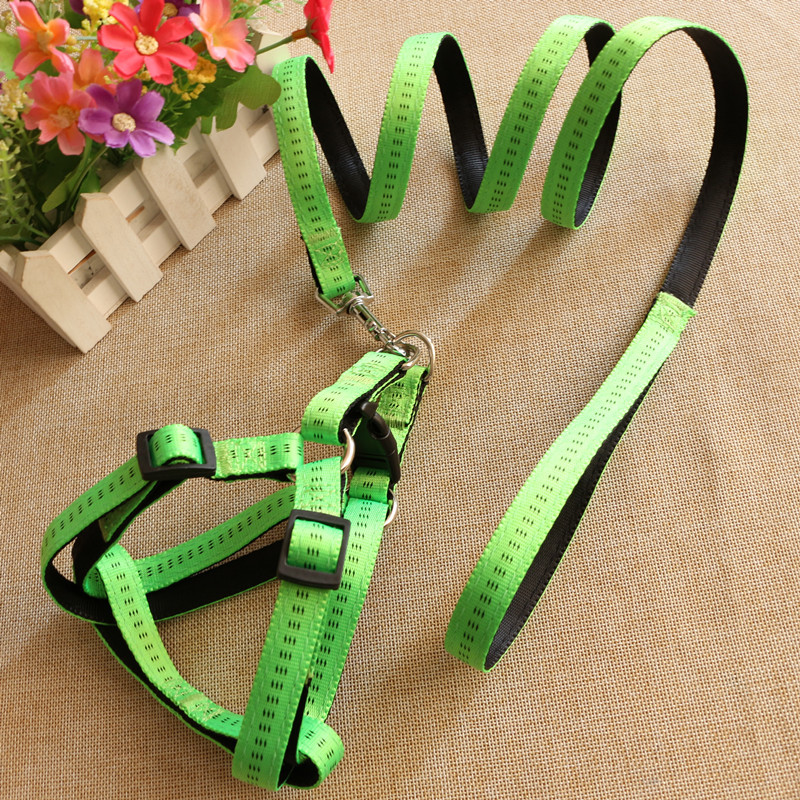 Pet Supplies Filling Nylon Xiong Bei Tao Dog Hand Holding Rope Foaming Comfortable Pet Traction