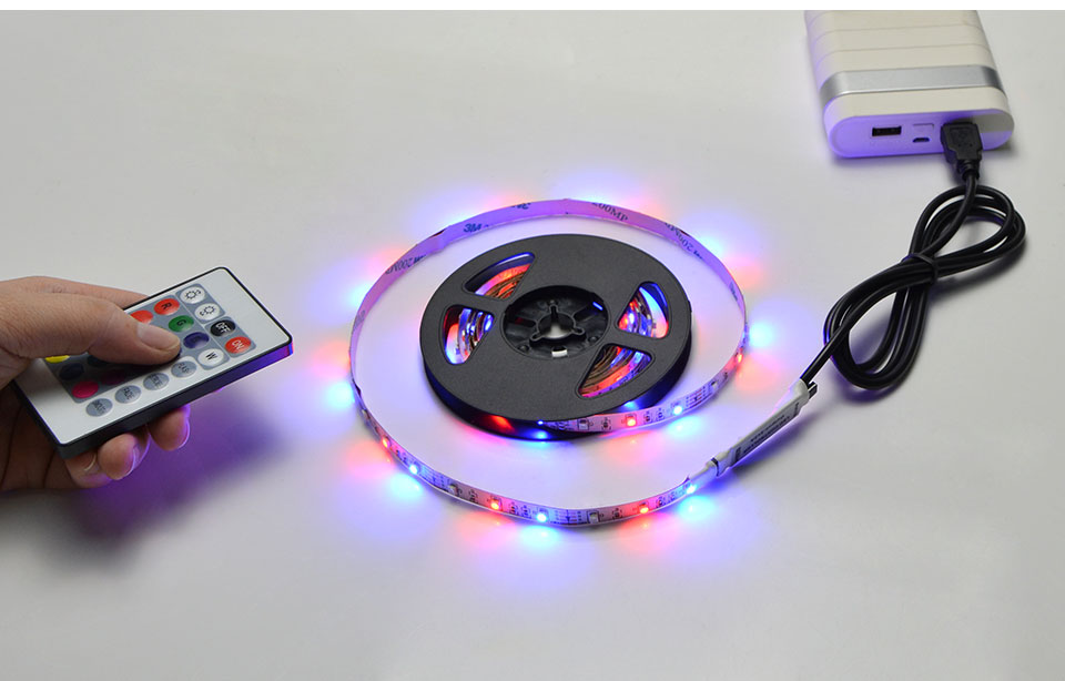 Hf0a57e2e13784d4fa6fd16c740c3bd9dL 5V USB Powered LED Strip RGB TV backlight Neon lamp 50cm 1M 2M 3M 4M 5M Lamp Tape with IR control For LED Diode Ribbon Lighting