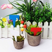 Hot 10PCS Colorful Plant Markers Set Garden Bonsai Succulent Seedlings Tags Sign Gardening Labels Nursery Pots Garden Decoration|Plant Markers| |  -