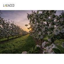 Laeacco Dusk Meadow Park Grassland Child Portrait Photography Backgrounds Customize Photographic Backdrops For Home Photo Studio customize washable wrinkle free rococo painting style forest photography backdrops for photo studio portrait backgrounds s 1250
