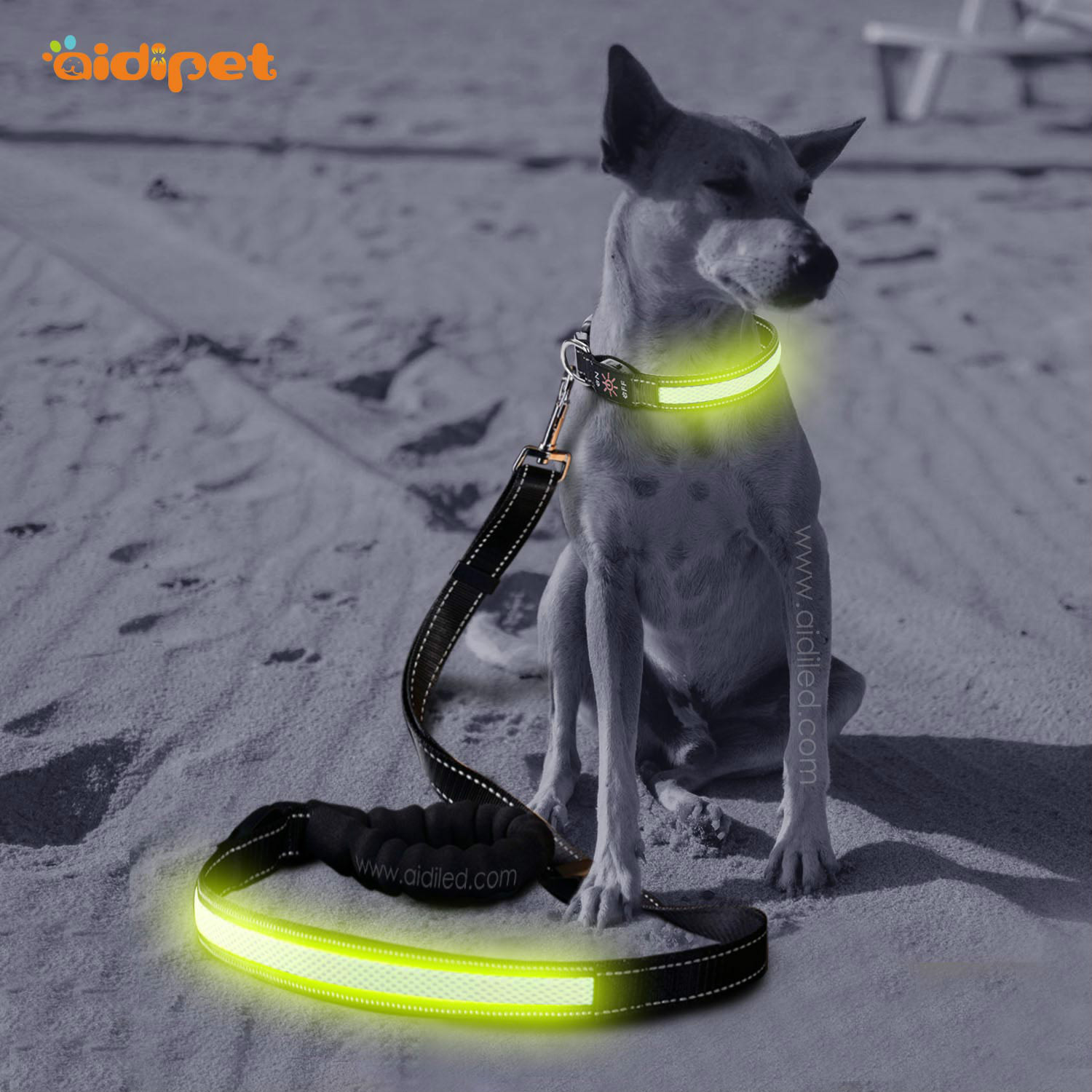 LED Pet Traction Rope USB Charging Breathable Mesh Night Colorful Dog Hand Holding Rope