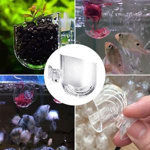 Glass Feeding Cup Fish Feeder Brine Shrimp Eggs Red Supplies Worms For Aquarium Food Fish Supplies