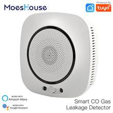 Wifi smart co gas sensor carbon monoxide leakage fire security