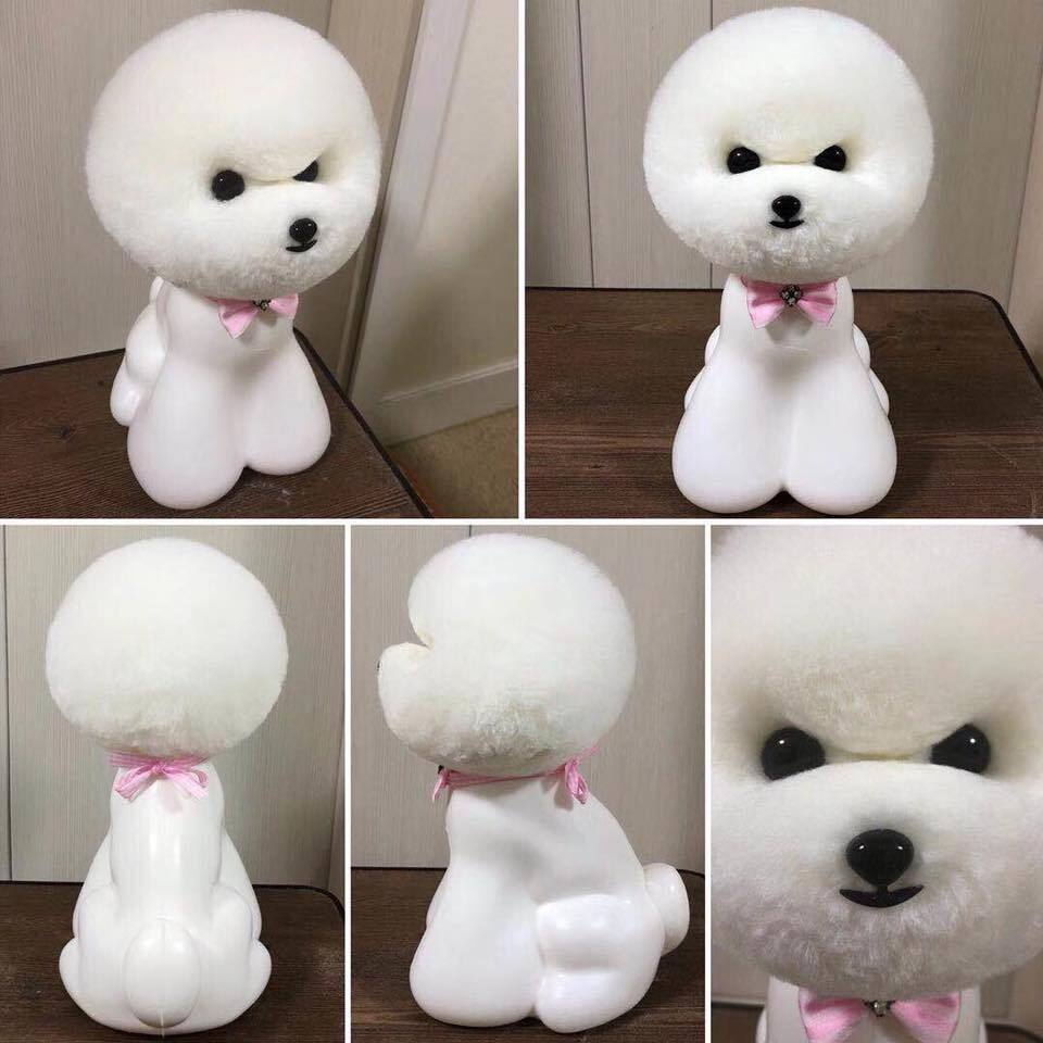 Free Shipping Pet Grooming Tool Groomer Trimming Practice Model Dog Fur Teady Bear Head Wig Only(no Mannequin)