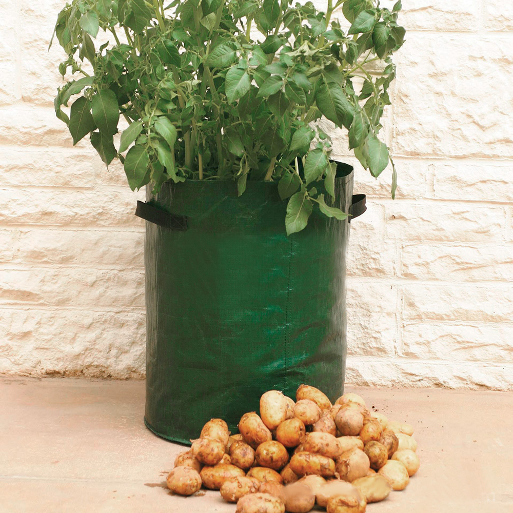 10 Gallon Potato Planting PE Bags Cultivation Garden Pots Planters with Fabric Pouch  for Vegetable Grow Bag Garden Supplies|Grow Bags| |  -