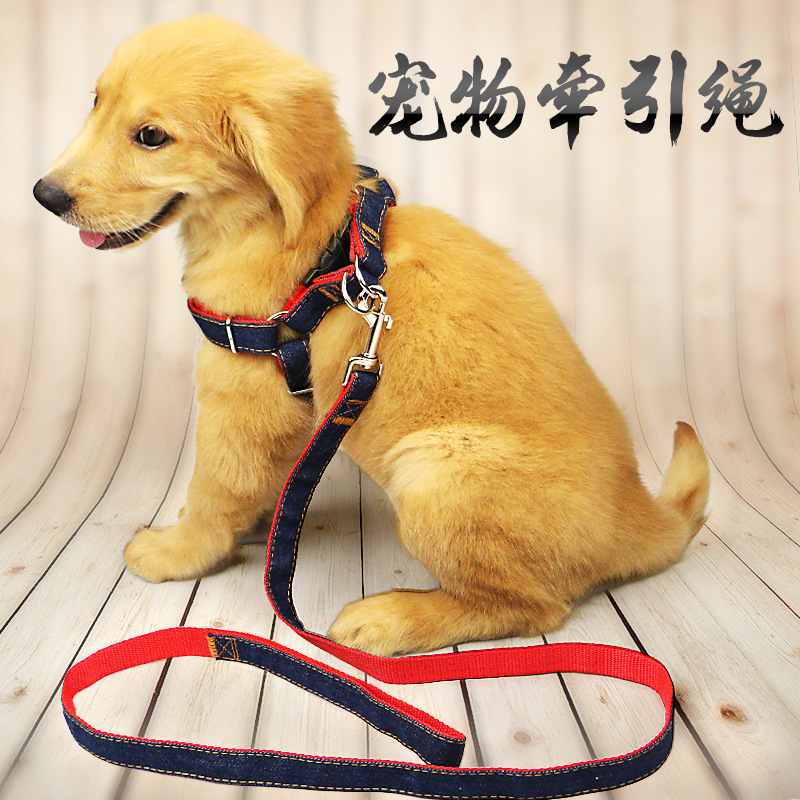Dog Hand Holding Rope Neck Ring Golden Retriever Teddy Medium Small Puppy Dog Rope Puppy Chain Pet Dog Supplies