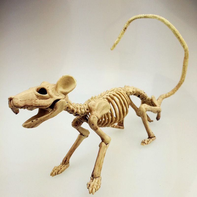 Halloween Party Decoration Movie Props Halloween Plastic DIY Animal Horror Skeleton Model Bat/Spider/Scorpion/Lizard Bone