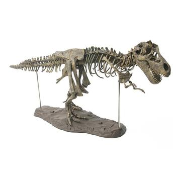 Large Dinosaur Fossil Skull Animal Model Toys Tyrannosaurus Rex Assemble The Skeleton Model Furnishing Articles Decoration retro archaize silver horse head statue animal bust luxury model resin craftwork home furnishing articles l2427