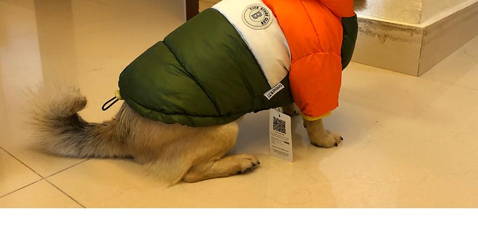 Nueva ropa de invierno para perros, abrigo impermeable con capucha 23