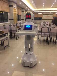 Robot Humanoid Waiteress Reception Be-Conversation-Content Business-Service Commercial