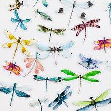 40 unidades/pacote insetos libélula borboleta pvc espécime adesivos decorativos diy livro álbum decoração