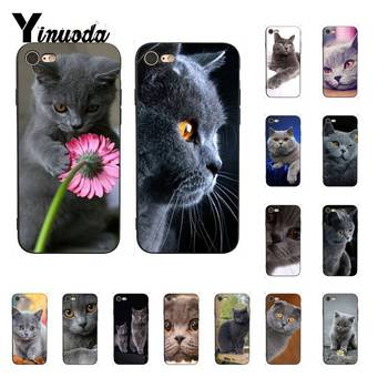 Yinuoda British Shorthair cat Cover Black Soft Shell Phone Case For iPhone 8 7 6 6S Plus X XS MAX 5 5S SE XR Cellphones image