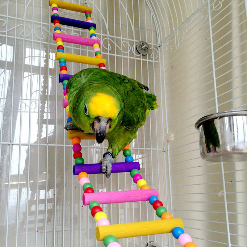 2.94US $  Birds Pets Bird Supplies Hanging Colorful Balls Climbing Toy 1 Pcs Parrots Ladders With Na...