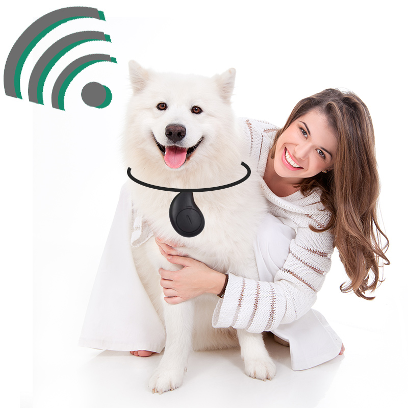 New Mango Anti-lost Pet Tracker Pet Child Old Anti-lost Patch Mobile Two-way Alarm