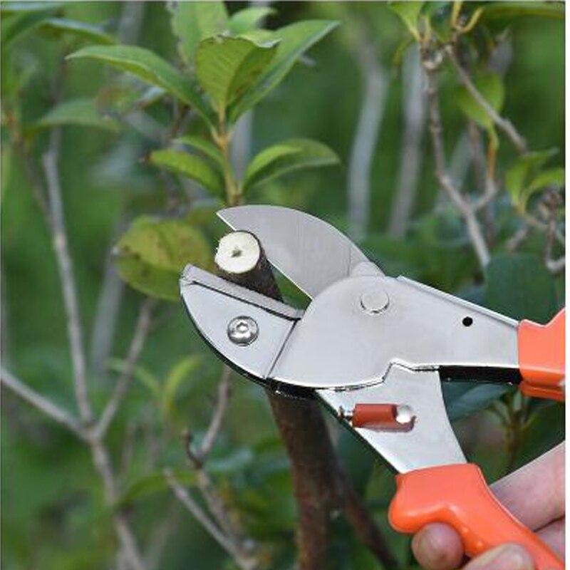Labor Saving Branch Pruners Fruit Picking Cutting Scissors Grafting Tool Plant Tree Potted Trim Tools Garden Pruner Shears