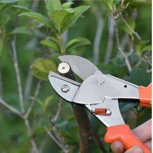 Labor saving ramo podadores frutas picareta corte tesoura ferramenta de enxertia planta árvore em vaso aparar ferramentas jardim podador tesouras
