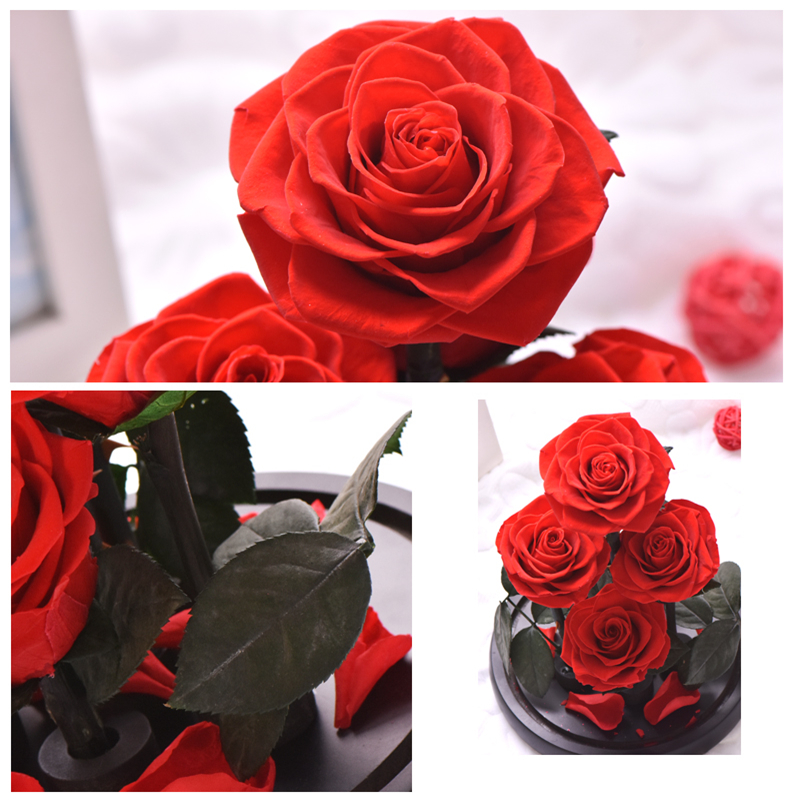 Image 3 - New Arrival Eternal Preserved Rose with Glass Dome 5 Flower Heads Rose Forever Love Wedding Favor Party Gifts for WomenArtificial & Dried Flowers   -