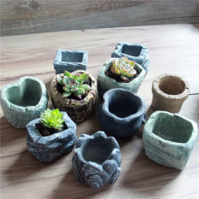 Plants Flower Pot Cute Micro Landscape Succulent Ornaments Garden Miniatures Decoration DIY Decor(China)
