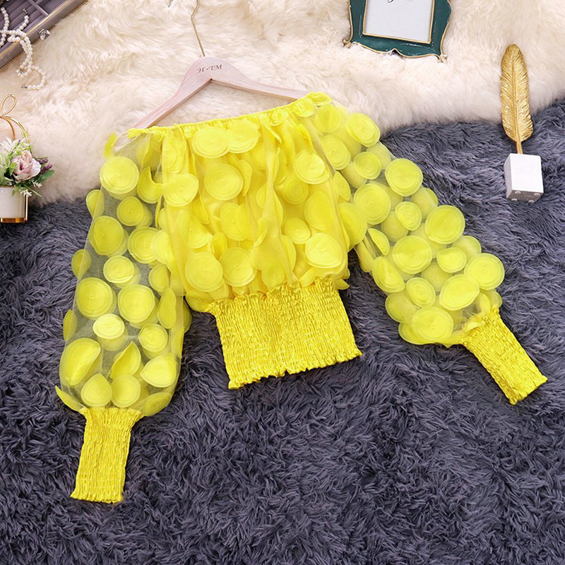 2019 Spring Autumn New Female Slash Neck Lantern Sleeve Flower Gauze Shirt Women's Solid Color Mesh Short Blouse Women Shirts