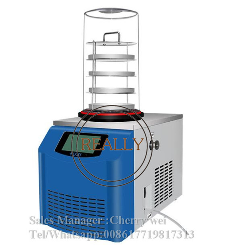 0.12 mètres carrés mini lyophilisateur pour la maison/laboratoire fruits et légumes Machine de séchage