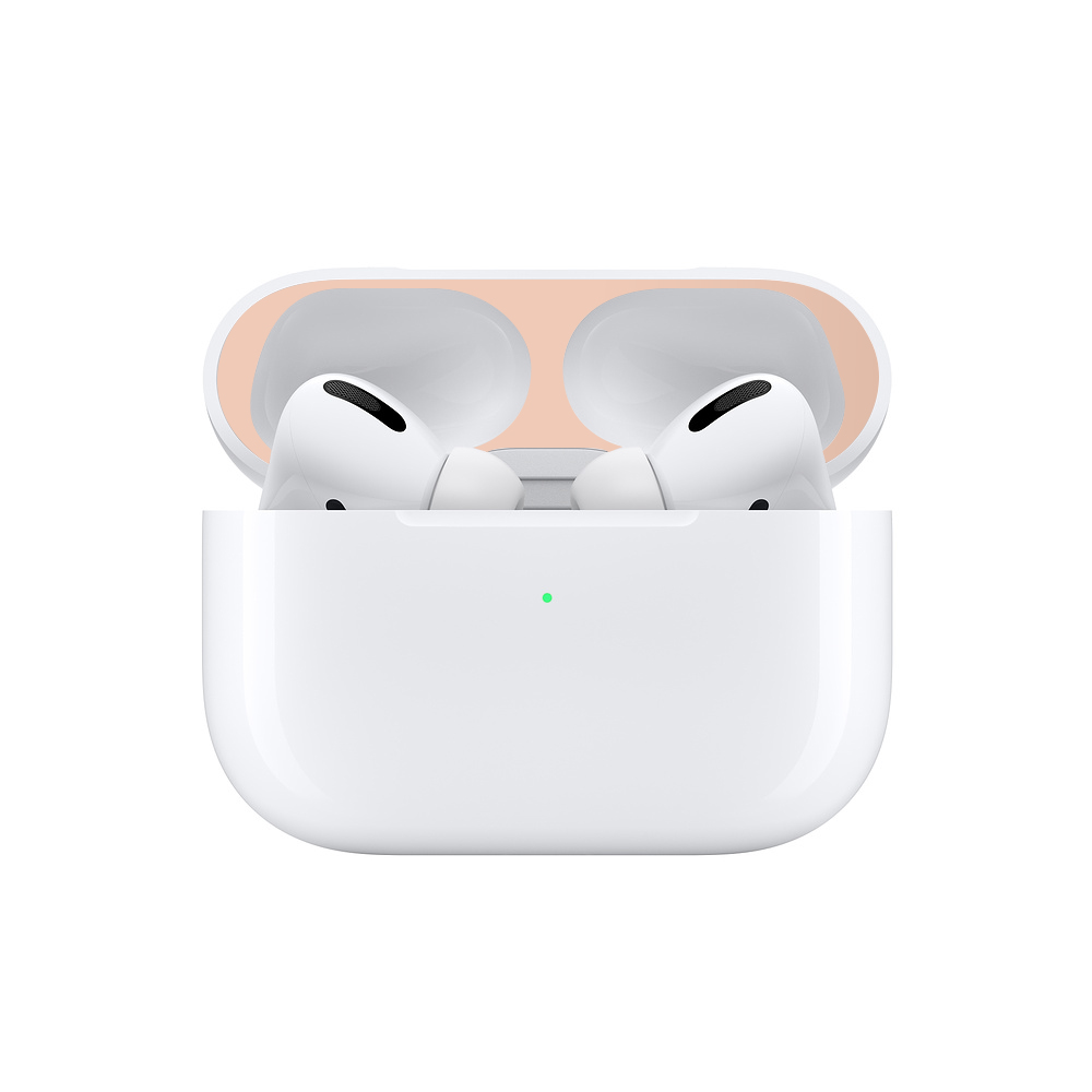 Protective Metal Dust Guard for AirPods Pro 21