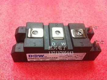 DM2G100SH12AE DM2G200SH12AE DM2G75SH12AE and--RXDZ